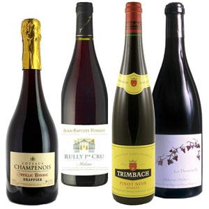 Carton Cholis Pinots Noirs pour Lindaboie.jpg