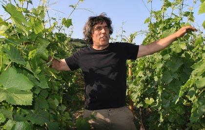 Marc Tempé dans les vignes.jpg